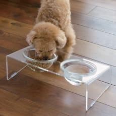 アクリル製ペットフードテーブル 写真