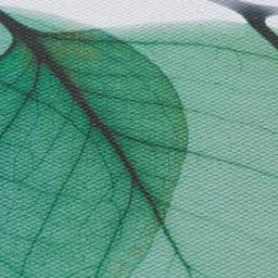 X-RAY/エックスレイ アートフレーム ユーカリ 素材感が出るキャンバスにプリント。