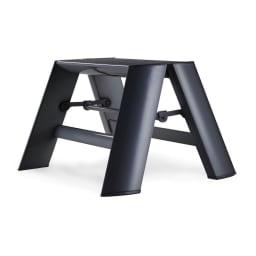 METAPHYS/メタフィス アルミステップ「ルカーノ」 1段 ブラック