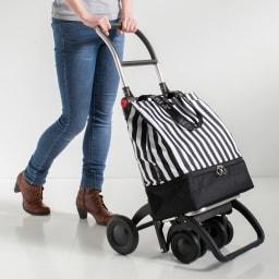 ROLSER/ロルサー ショッピングカート 4輪カート+保冷・保温付きバッグ (ウ)ストライプ 週末のまとめ買いは安定感のある4輪で。重い荷物も前押しで移動もスムーズ。