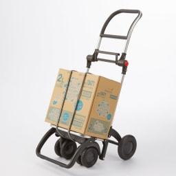 ROLSER/ロルサー ショッピングカート 4輪カート+保冷・保温付きバッグ お手持ちのゴムバンドでカートだけの使用も。