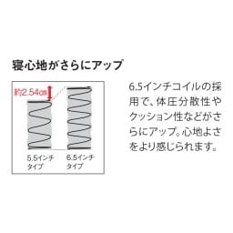 【配送料金込み 組立・設置サービス付き】SIMMONS/シモンズ ダブルクッションベッド 6.5インチピロートップ ワイドダブル