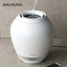 バルミューダ Rain/レイン Wi-Fiモデル WIFIモデル 本体 写真