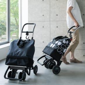 ROLSER/ロルサー ショッピングカート 4輪カート+保冷・保温付きバッグ 写真