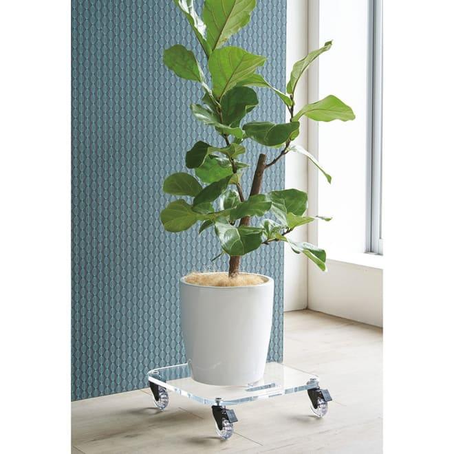 Rollen/ロレン 頑丈アクリル台車 幅44.5cm マルチワゴン 観葉植物のスタンドとしてもおすすめ。