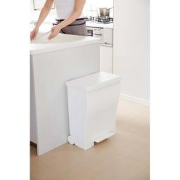 Kcud クード ダストボックス 容量39L ペールトーンワイド 白色もきれい。