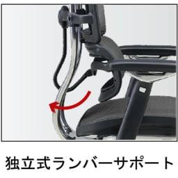 Ergohuman エルゴヒューマンベーシック EH-HAM ヘッドありタイプ 腰に気持ち良いランバーサポート