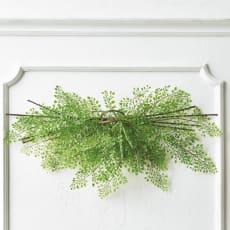 アジアンタム インテリアグリーン ウェルカムグリーン