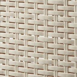 蓋付き 樹脂製 バスケット 40L タテ 同色2個組 (イ)ベージュ