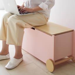 abode/アボード ベンチボックス・ベンチ収納[abode・アボード] 大人も子供もベンチとして座れるので、リビングなどにもおすすめです。