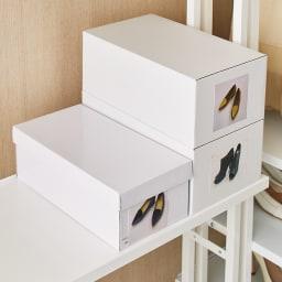 Struty(ストラティ) ラックシリーズ ハンガー2本&棚3段・幅85cm 棚板奥行30cmとスリムなのに靴箱がちょうど収まります。