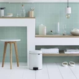brabantia/ブラバンシア ダストボックス カラー 容量5L スタイリッシュなデザインで、お部屋のインテリアにも美しくなじみます。