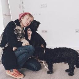 Sam Toft/サムトフト アートフレーム ワイド スイートピー色のウサギ、犬と一緒に仕事・生活をしています。