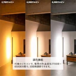 ネオマンクス LEDバーライト ブラス 調色機能イメージ