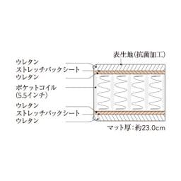 【配送料金込み 組立・設置サービス付き】シェルフスリム 引き出し付きベッド 5.5インチマットレス マットレス断面図