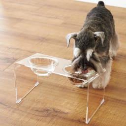 アクリル製ペットフードテーブル ペットのかわいいお食事シーンがよく見える、クリア素材のペットボウル。