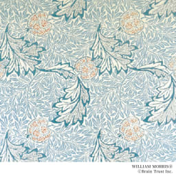 William Morris/ウィリアム・モリス りんご レッドアゲート ブローチ ジュエリーのデザインはウィリアムモリスの図案を基にしています。