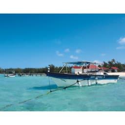 タヒチ リキティア K18 黒蝶パール イヤリング・ピアス 島を所有し、母貝に栄養が行き届くようゆとりをもって養殖する事で上質の真珠が生まれる。