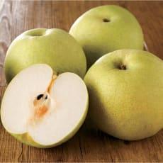 千葉産 かおり梨 (約5kg)
