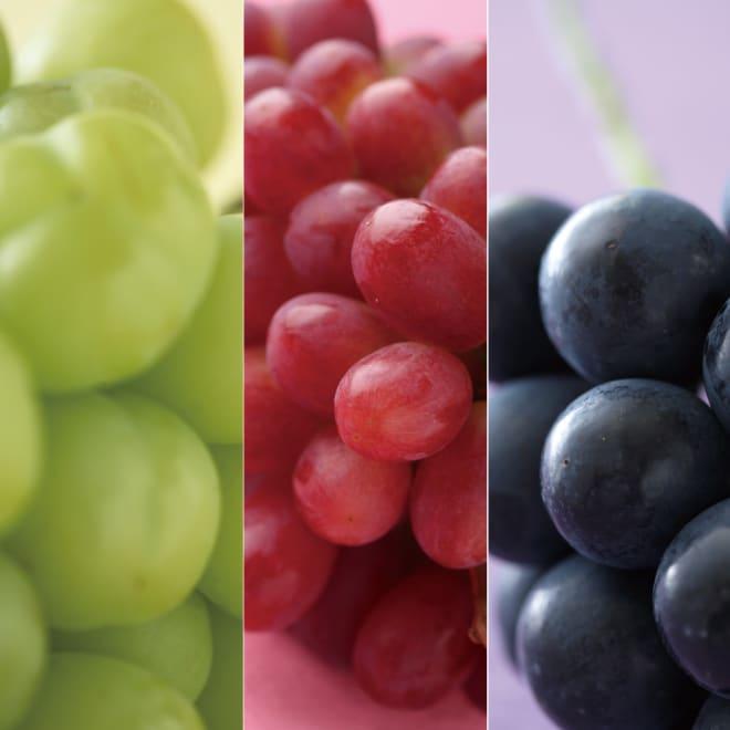 サン・フルーツ厳選 3種のまるごと種なしぶどう食べ比べ