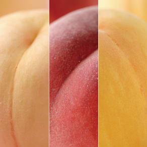 サン・フルーツ厳選 3種の桃の食べ比べ 写真