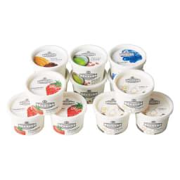 木次乳業「VANAGA(バナガ)」 アイスクリーム (5種 計12個) 5種(バニラ3個、いちご3個、抹茶あずき2個、ビターチョコ2個、ブルーベリー2個)各120ml 計12個