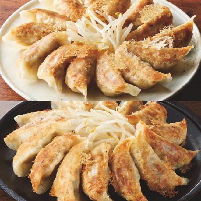 「五味八珍」 もち豚・黒豚餃子食べ比べセット 【盛り付け例】2種類の味をお楽しみください。