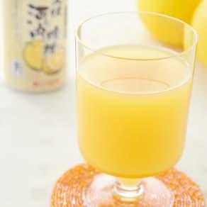 えひめ飲料 河内晩柑ストレートジュース (190g×24缶) 写真