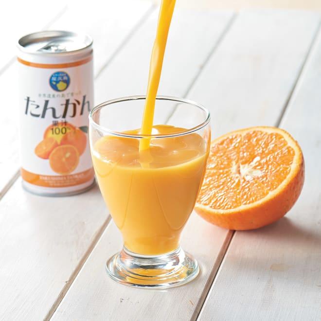 屋久島たんかんストレート100%ジュース (190g×20缶) ほんのりとろみのある果汁が100%の証しです!