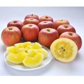 山形県朝日町産 dのりんご 2kg 写真