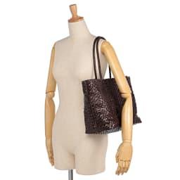 インド製 メッシュ トートバッグ 着用例