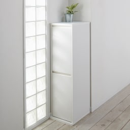 静かに閉まる家具調 分別タワーダストボックス 2分別 コーディネート例(イ)ホワイト