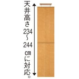 並べても使える 突っ張り式ユニットシューズボックス 天井高さ234~244cm用・幅60cm[紳士靴対応]