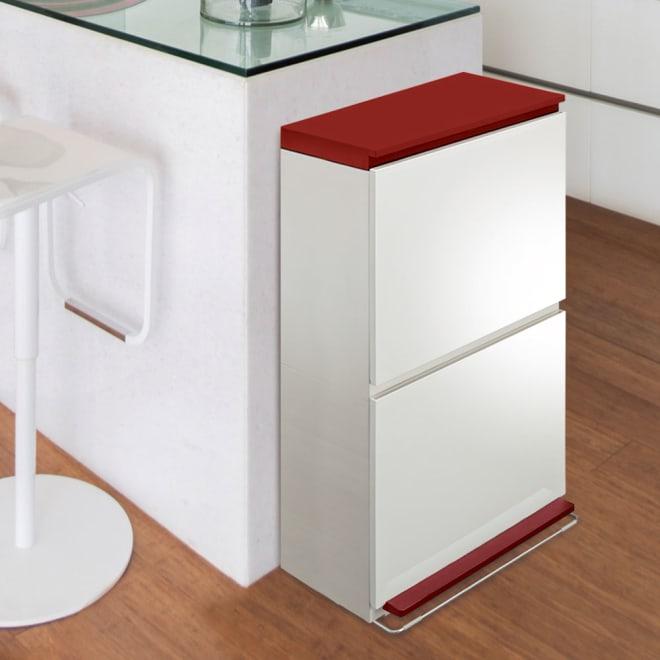 分別ダストボックス ペダル2段ワイド 狭小のキッチンスペースにも収まる薄型ワイドな型。