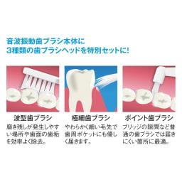 オーラルドクター 歯ブラシ除菌ケース ディノス特別セット