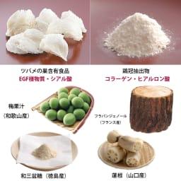 ぷる艶ぜりぃ「京梅嘉」ゴールド 1箱(28包) 保存料、着色料、合成甘味料不使用