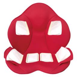 芦屋美整体 骨盤スリムスタイリーエアー ※エアーバッグイメージ 6か所14枚のエアーバッグが、背中から腰、骨盤周りの筋肉を動かします。