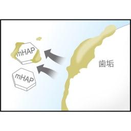 アパガードロイヤル 135g さらにお得な4本組  (1)キレイにする 表面に付着した虫歯の原因となる歯垢を吸着、口内すっきり。 ※イメージ図