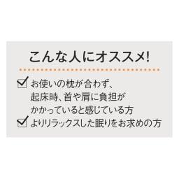 エムール リュクスシリーズ ボディーアッパーピロー2 本体(専用カバー付)+専用カバーのセット