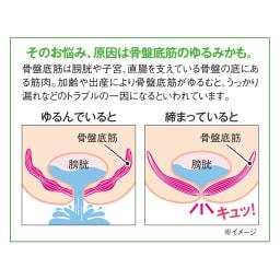 骨盤底筋 ケアガードル 2色組 ロング2枚組(M・L・LL)
