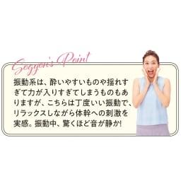 【送料無料】ルルド シェイプアップボード