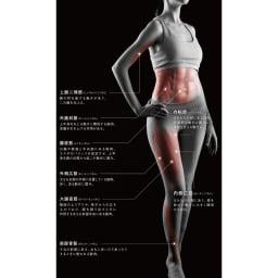 【送料無料】ルルド シェイプアップボード アプローチが期待できる筋肉(身体の前側) ※イメージ