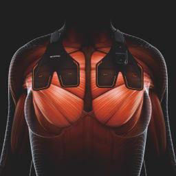 SIXPAD/シックスパッド Chest Fit(チェストフィット) 50周年特別セット 【左右同じバランスで胸部へ集中的にアプローチ】 胸の上部に装着。身体の中心から左右3cmの位置に設定した電気刺激で胸部の筋肉をトレーニング。