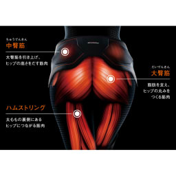 SIXPAD/シックスパッド BottomBelt Bottom Belt(ボトムベルト) 高電導エレクトロード パッド4枚 ※イメージ