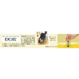 EXGEL/エクスジェル アウルカンフィ(クッション)