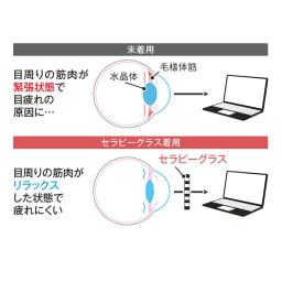 目を労わるアイケア眼鏡 セラピーグラス ピンホール効果とは? 表面に開いた小さな穴がカメラの絞りのようにピントを合わせて眼筋をサポート。眼筋を休めたままものを見ることができます。