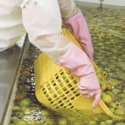 梅肉酵母エキス 115g 1年以上かけて酵母を発酵熟成 創業以来変わらない手作り製法で、1年以上熟成させ手間ひまかけて製造されています。