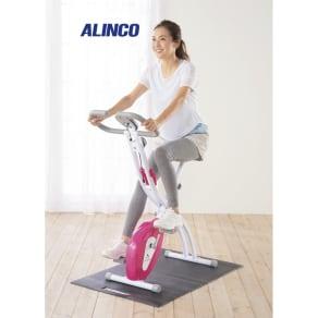 アルインコ/ALINCO クロスバイク AFB4417X 写真