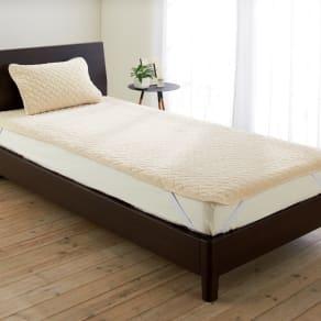 ファイテン 抗菌防臭リラックス寝具シリーズ リバーシブル パッドシーツ(シングルサイズ) 写真