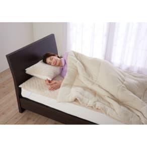 ファイテン 抗菌防臭リラックス寝具シリーズ リバーシブル ふんわりケット(シングルサイズ) 写真